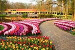 Velikonoční výlet za tulipány v parku Keukenhof