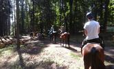 Den plný zážitků s koňmi v jezdeckém klubu