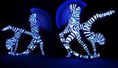 Vstup na dětské představení Živý Kaleidoskop