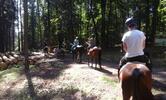 Letní jezdecký tábor
