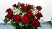 Holandské růže i s rozvozem po Ostravě
