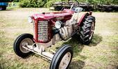 Výstava agrokomplex v Nitře: vše o zemědělství