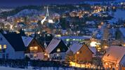 1denní adventní výlet do Seiffenu: vesnice hraček