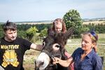Oslí stezka: putování s oslíkem v přírodním parku
