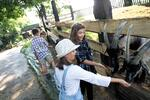 2denní vstup do polského zábavního parku Inwald