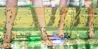 Koupel nohou s rybkami Garra Rufa dle výběru