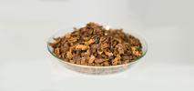 Cascara: předchůdce kávy a svěží životabudič