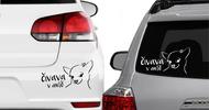 Samolepky na auto s výběrem 20 psích plemen