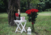 Pugét složený z 11 až 101 holandských růží