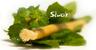 Přírodní kartáček Siwak - čistí zuby jinak